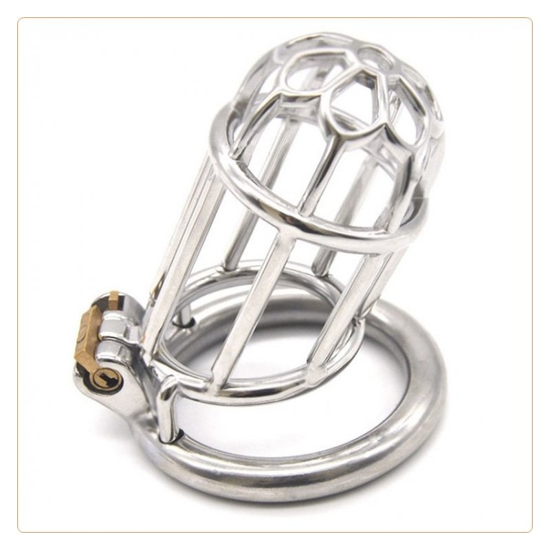 Wholesale Plum Blossom Chastity Device