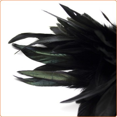 Wholesale Frisky Feather Duster