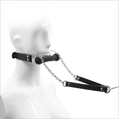 Wholesale Bit Gag With Collars  Leads
