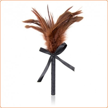 Wholesale Frisky Feather Duster With Bow